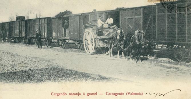 Carcagente -Norte