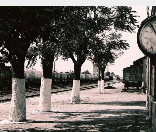 Estacion de Tomelloso, foto José Marquez, archivo AAFTA