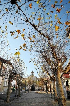 Plaza de La Reineta , fondo TFGP.
