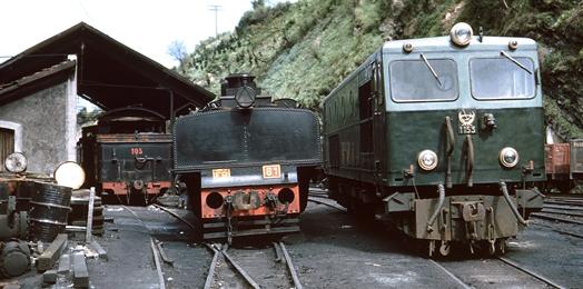 Lovomotora diesel de O.P. en el Fc de La Robal. Foto Peter Willen